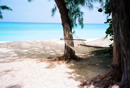 Hammock hangs between two palm trees next to a sandy beach